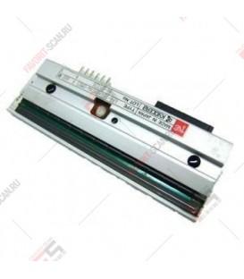 Печатающая головка 203 dpi для MPRINT TLP100/TLP300 TERRA NOVA